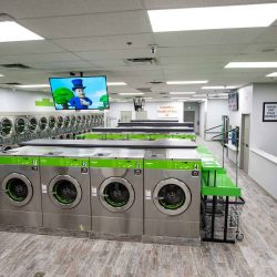 Laundry Industry Consultants