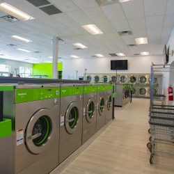 Coin Laundry Rental